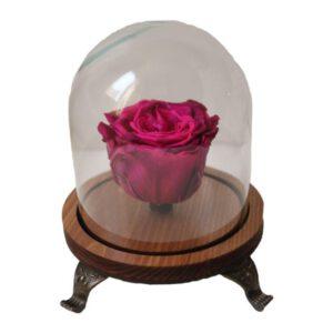 جعبه گل ماندگار مدل رز جاویدان