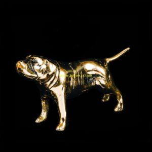 سگ برنزی سایز کوچک