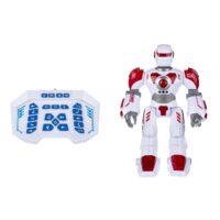 ربات مدل Valiant