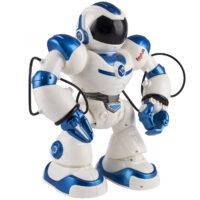 ربات هوشمند ایربات مدل J1029