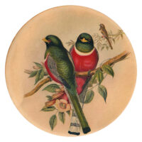 بشقاب سفالی طرح پرنده کد D61-S25